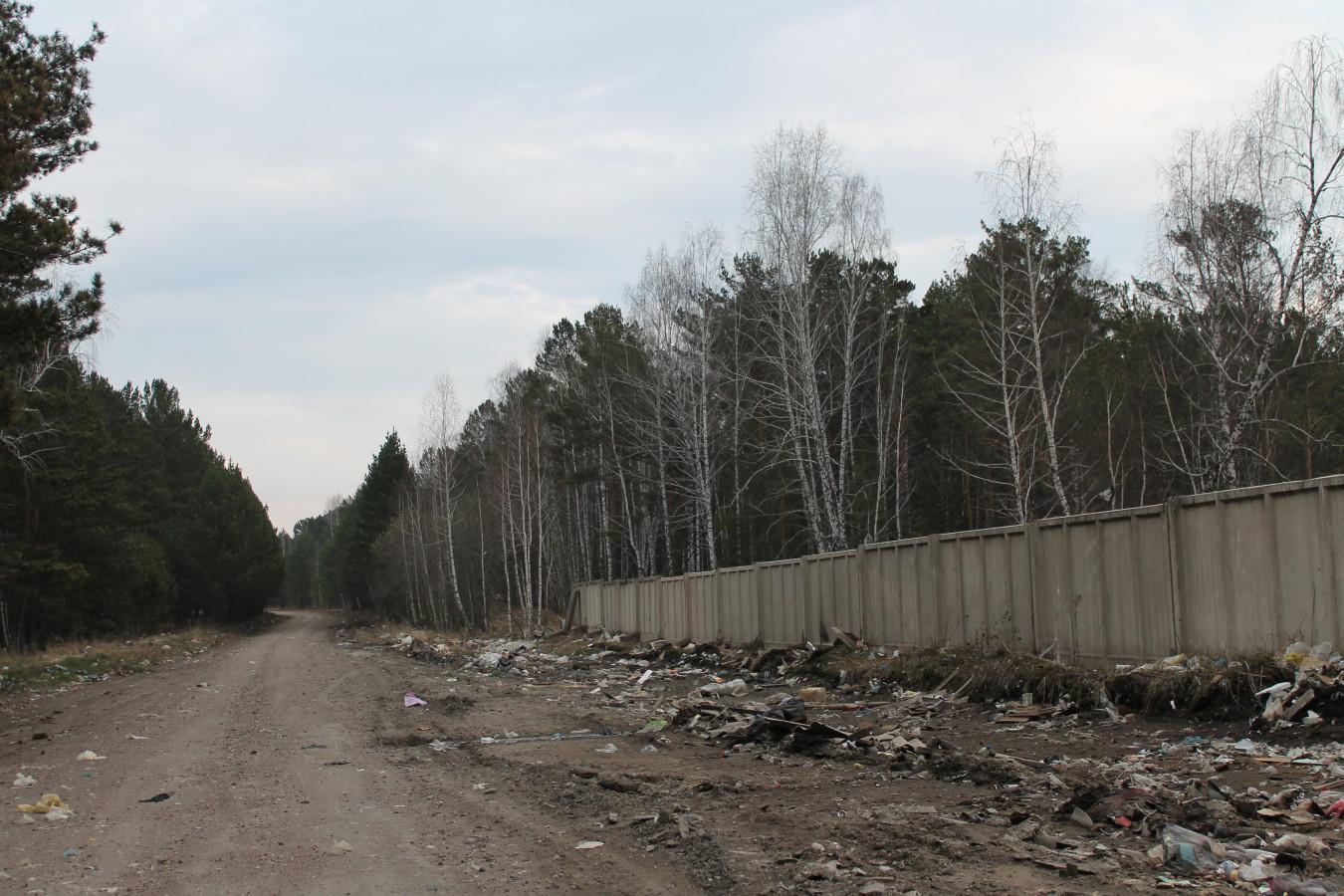 Состояние территории перед мусорным полигоном