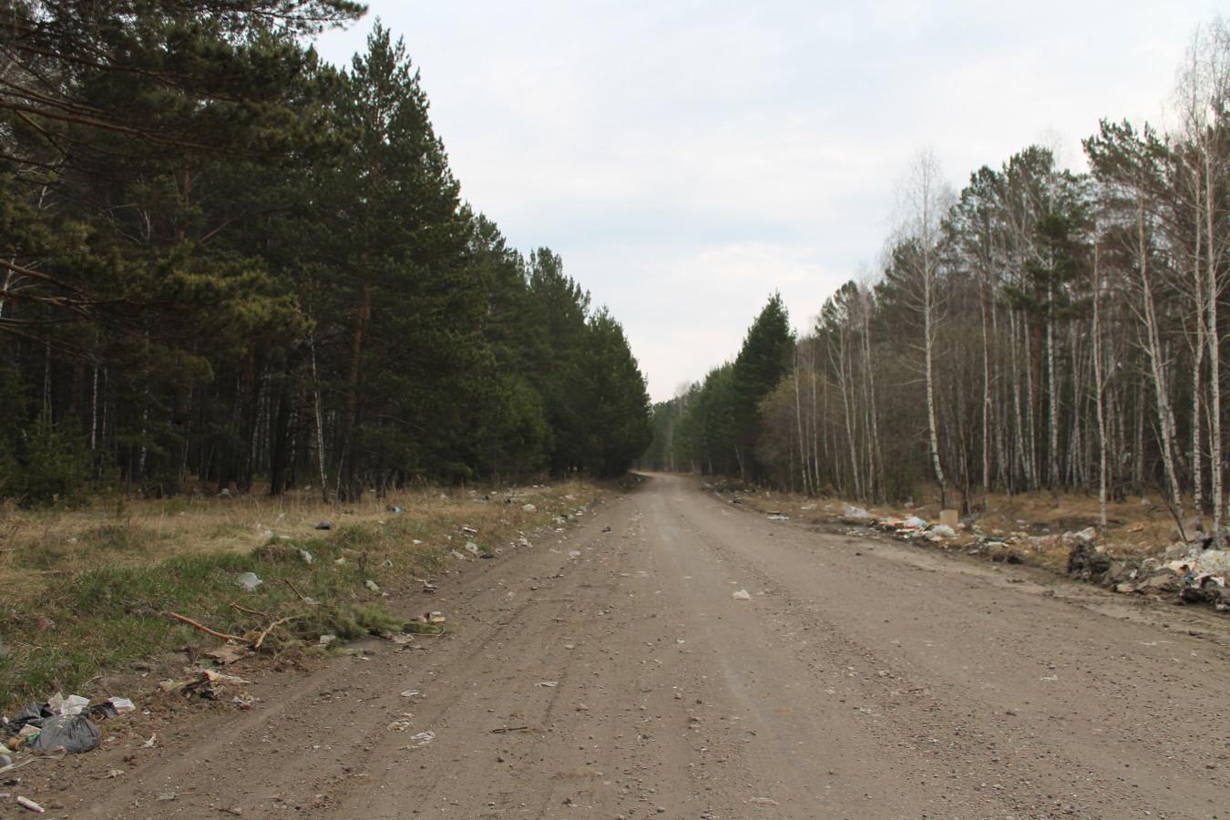 Догора в сторону станции Бузюк