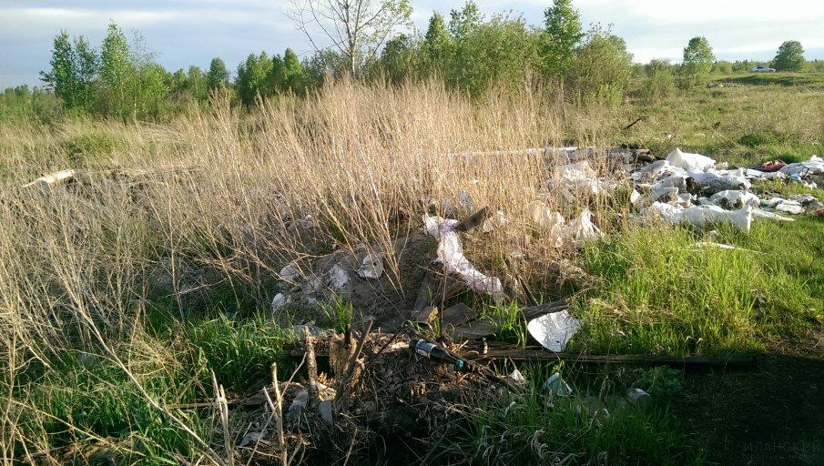 Свалка, ручей Буфетский, 2019 год