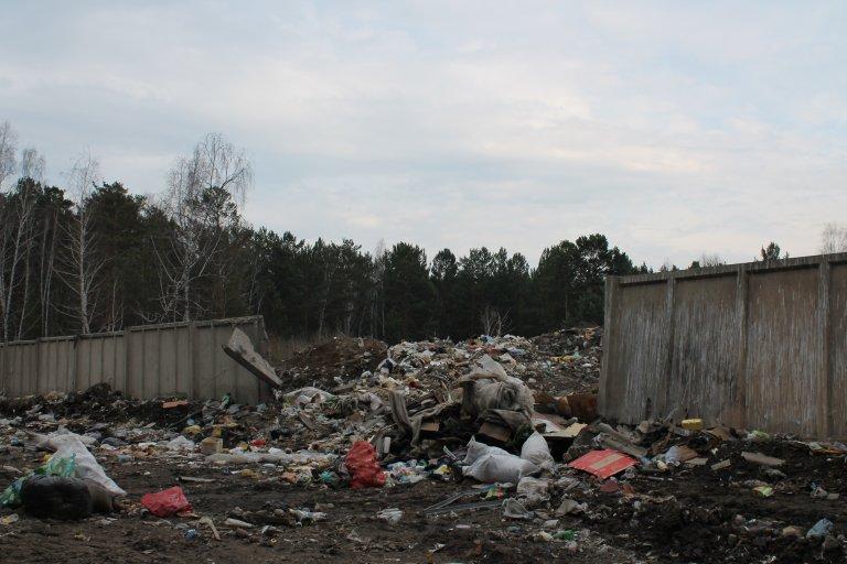 Дыры в ограждении мусорного полигона
