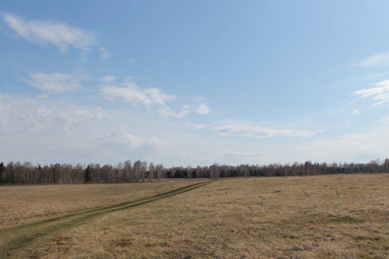 Осенний лес и поля
