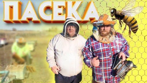 На Пельменя напали пчелы/ Сезон пасеки открыт/Bees attacked dumplings / apiary season opened