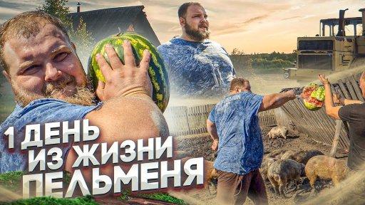 ПЕЛЬМЕНЬ. 1 ДЕНЬ из жизни Василия Камоцкого. Тренировки. Нокаут.